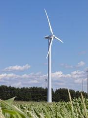 TCLP windmill