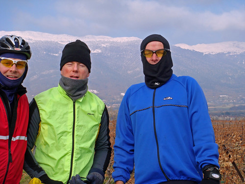 Do We Look Cold?