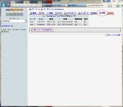 Create User for WordPress on phpMyAdmin