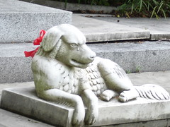 Pics from Cemeteries 21 at end of Canal in New Orleans - Weeping Dog