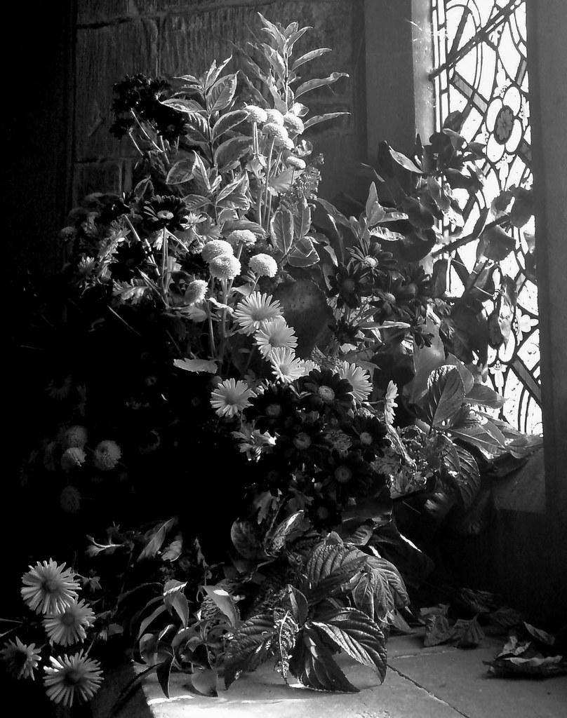 Rousham flowers