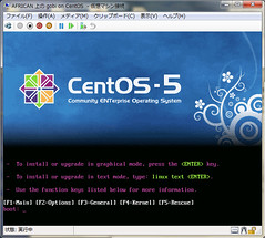 Screen at booting by CentOS installation media