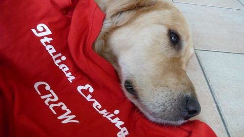 Crew-dog!