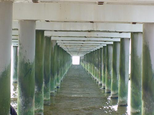 Po Palangos tiltu 2008-05-01 005