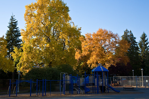Playground and Fall Colors