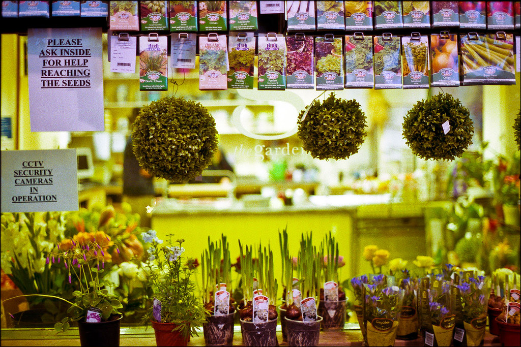 Flower shop in the Oxford covered market