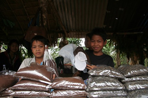 Lao coffee sellers