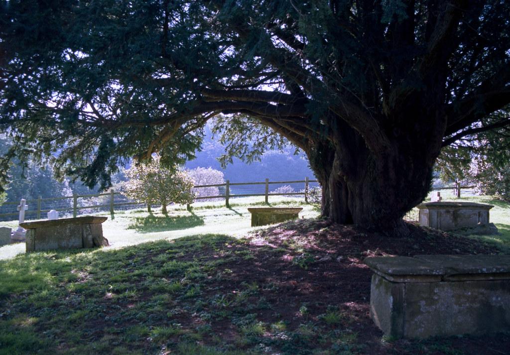 Dinnington churchyard
