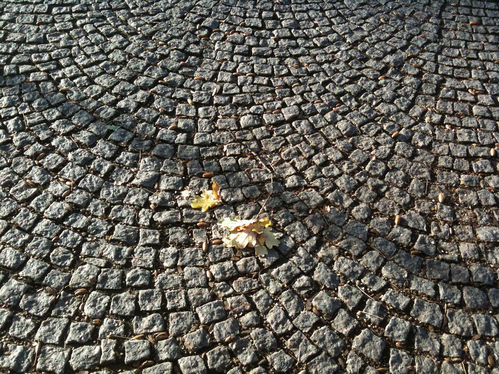 Shadow, leaf, cobbles