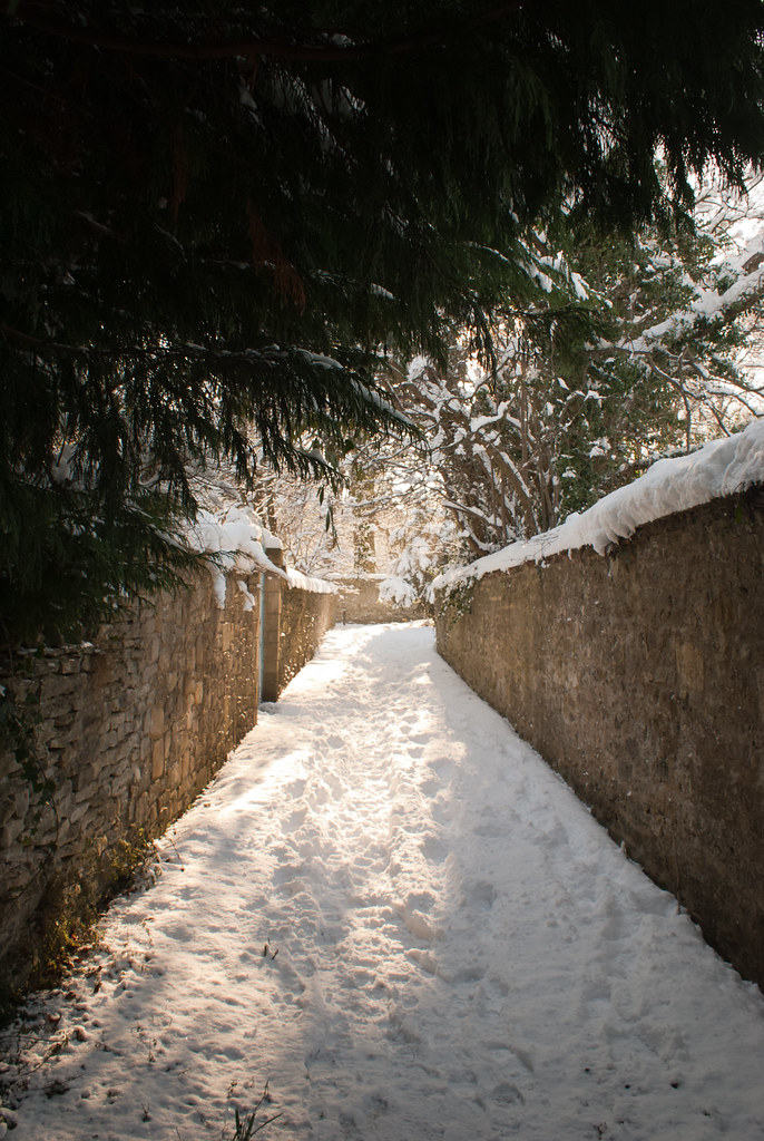 The Croft | sun and snow