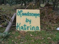 landscape by katrina