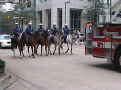 City's horse police and riders taking up the rear