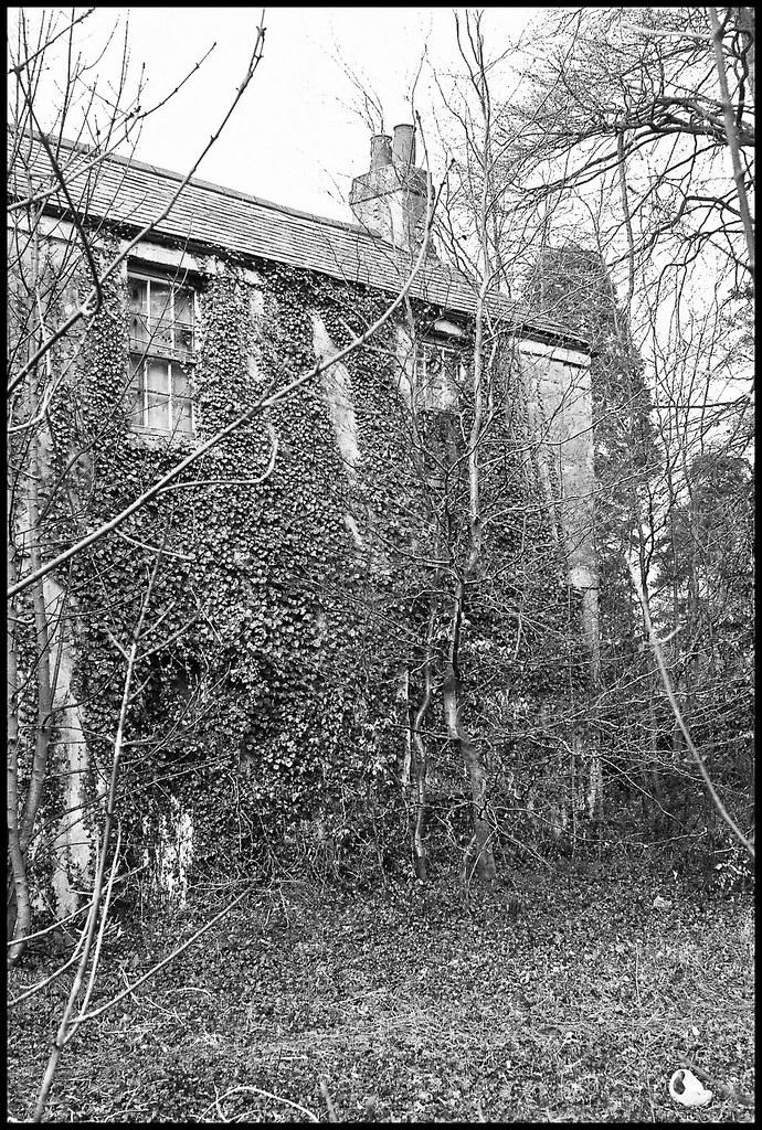 Derelict house 3