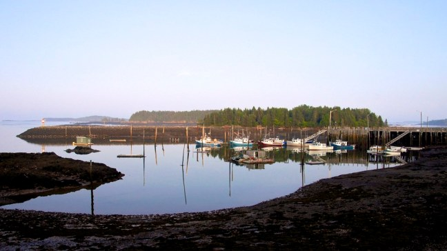 Low tide in the Bay of Fundy
