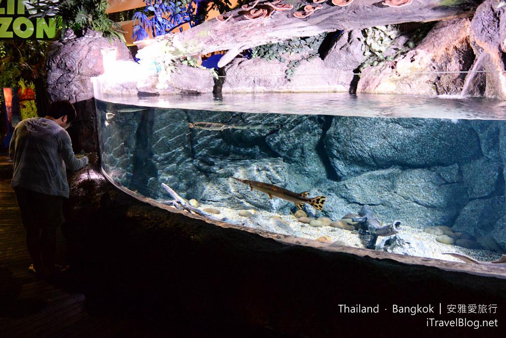 Siam Ocean World Bangkok 32