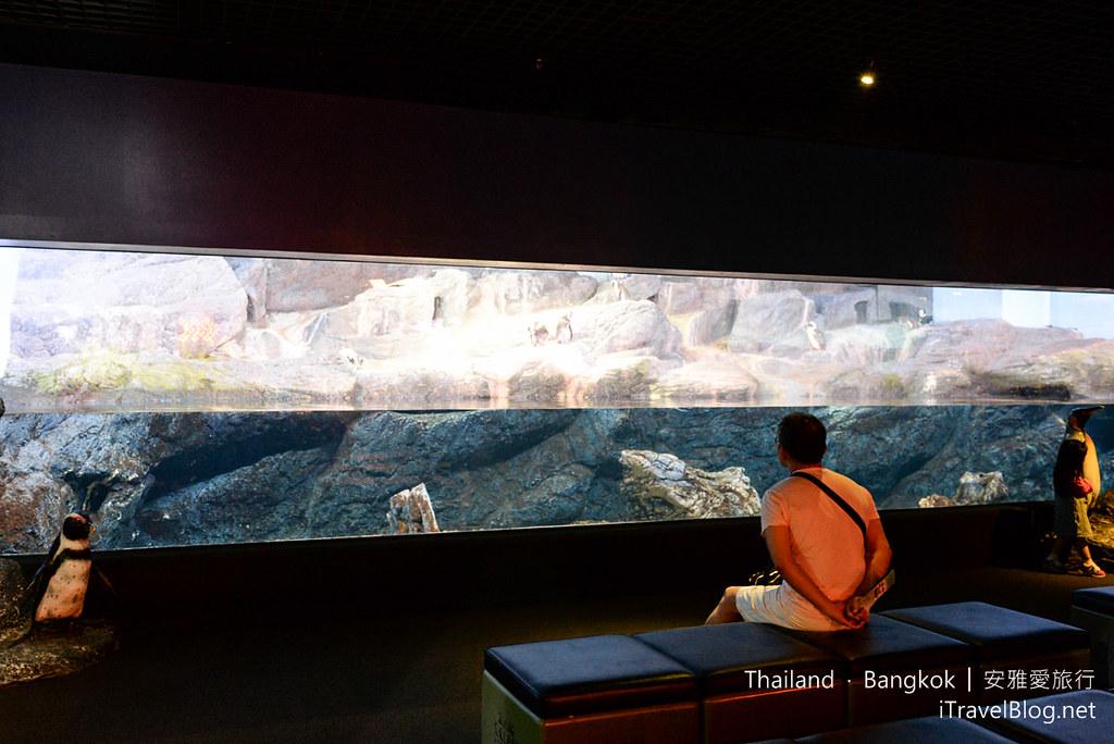 Siam Ocean World Bangkok 37