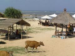 View from the Nusa Dua Beach Grill