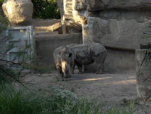 Det Zoo 072408 ZooMance_0088
