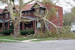 Fallen beside house