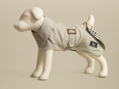 Burberry mascotas