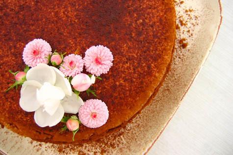 chocolatecheesecake.jpg