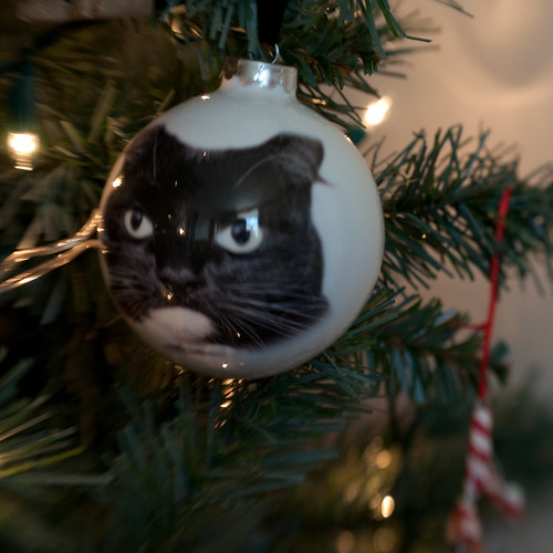 Phoebe bauble