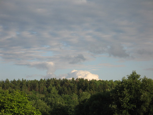 Vakarop 2008-06-29 009