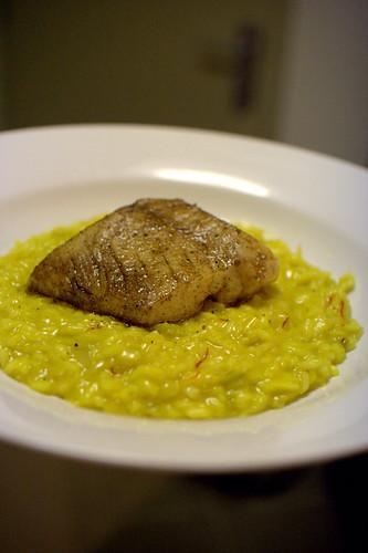 Saffron risotto & Snapper [ redux ]