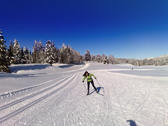 Doreen - Cross- Country Skiing