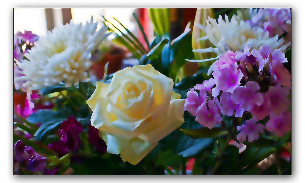 Bouquet   surface blur