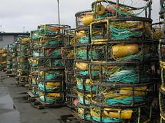 Crab traps at Half Moon Bay