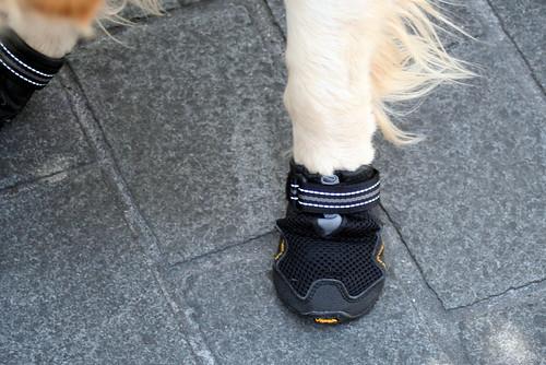 Valéas' new boots: the floor was freaking HOT!