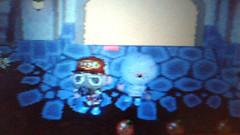 Animal Crossing: Wild World_02