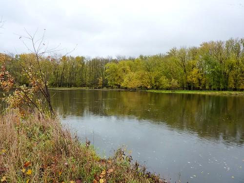 river at park