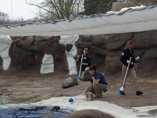 Det Zoo 42008_0008
