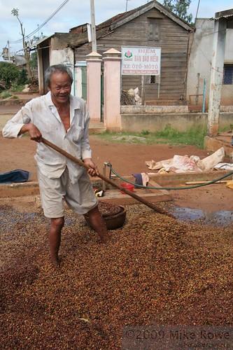 Vietnamese Coffee Farmers