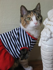 Pandora's first dress