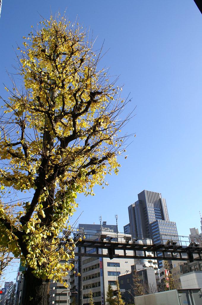 Japan0130
