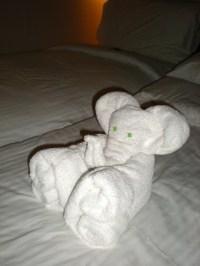 Download free Towel Origami Book Free