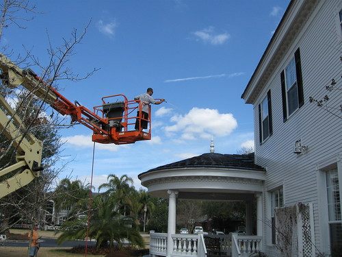 Tampa Roof Cleaning 078