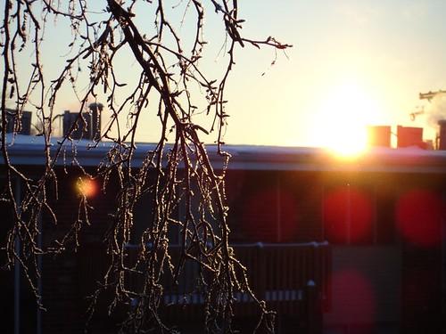 Icy sunrise over DeKalb, IL.