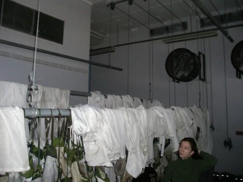 Una de las naves de secado