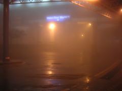 Misty Genting