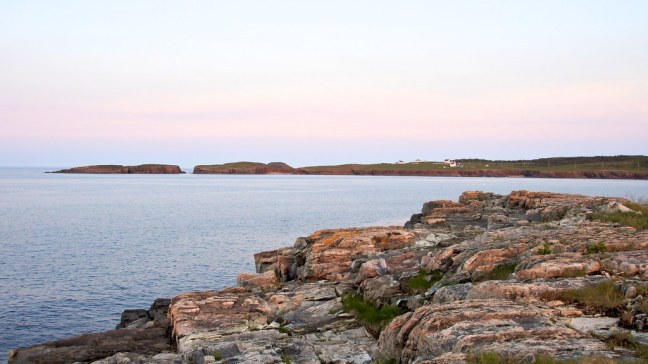 The puffin viewing site in Elliston is across the bay