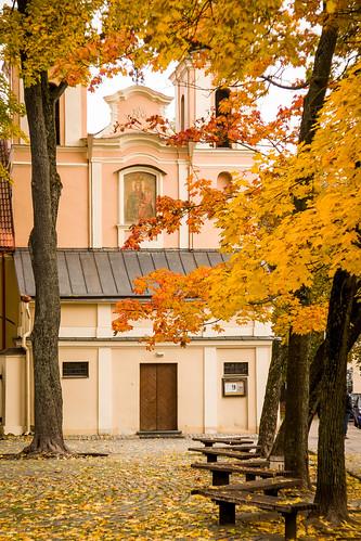 Šv. Kryžiaus (Bonifratų) bažnyčia