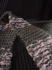 momo scarfy