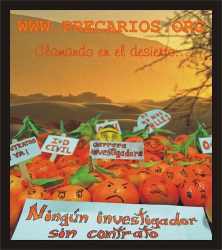 Manifestación de naranjas desierto