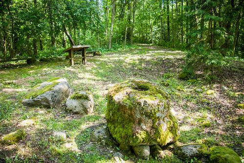 Šilalės dubenuotieji akmenys
