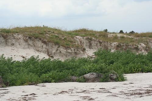 Staunings Ø efter storm