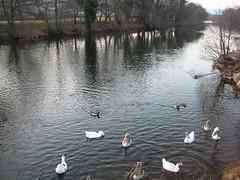 River Usk, Crickhowell